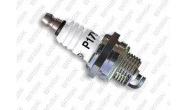 Zündkerze BRISK P17Y sägen/motorsensen GROSSES GEWINDE - BPM7A